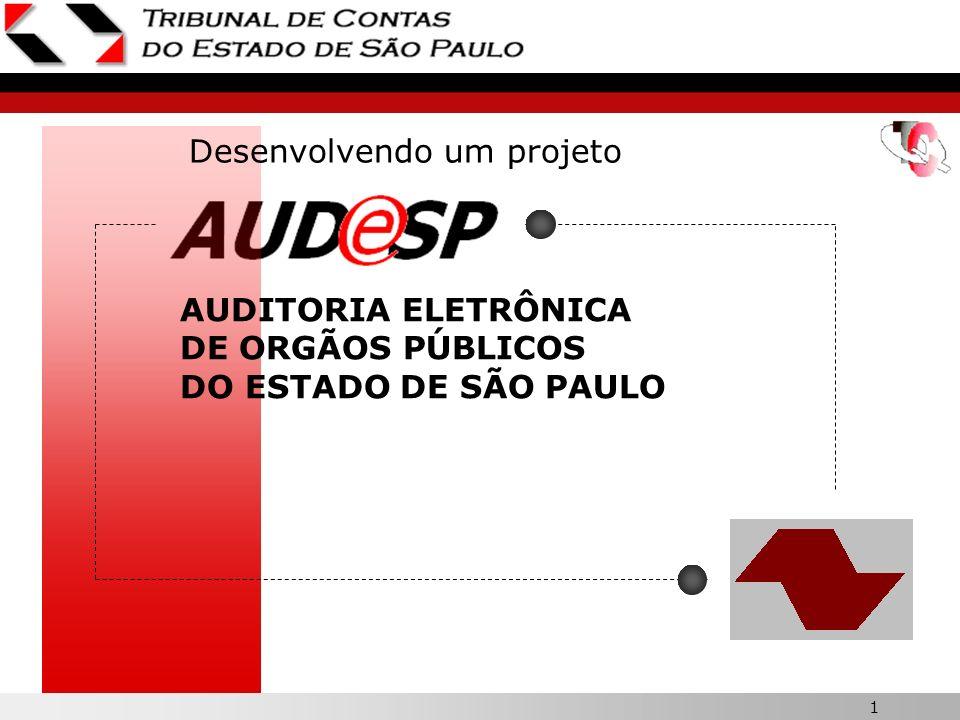 1 AUDITORIA ELETRÔNICA DE ORGÃOS PÚBLICOS DO ESTADO DE SÃO PAULO Desenvolvendo um projeto