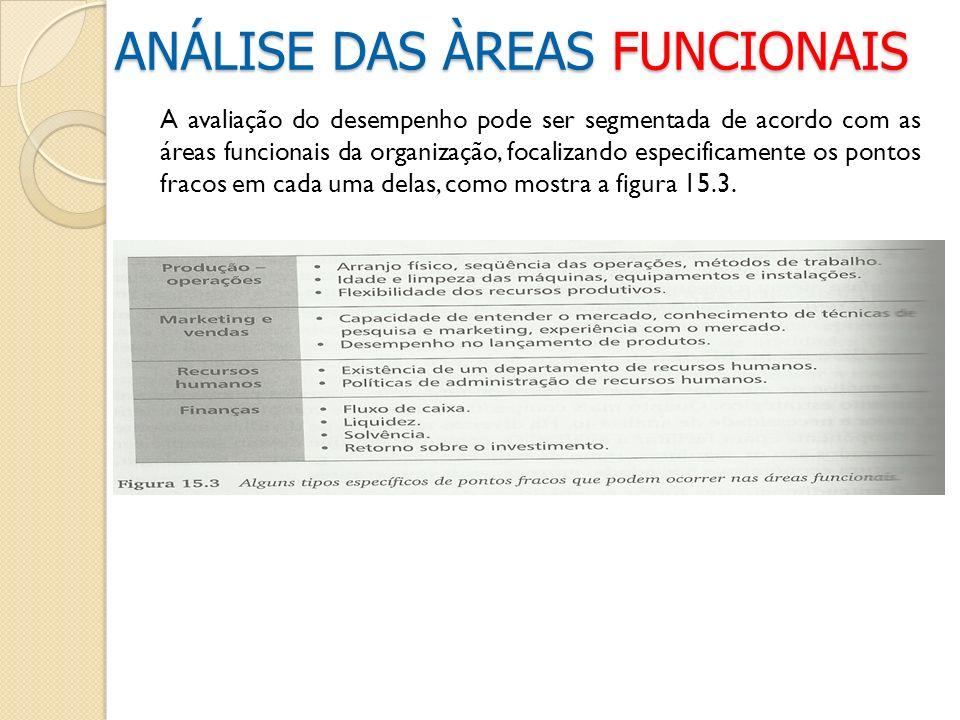 A avaliação do desempenho pode ser segmentada de acordo com as áreas funcionais da organização, focalizando especificamente os pontos fracos em cada u