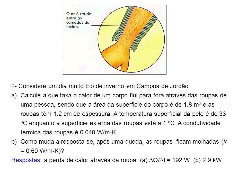 2- Considere um dia muito frio de inverno em Campos de Jordão. a)Calcule a que taxa o calor de um corpo flui para fora através das roupas de uma pesso
