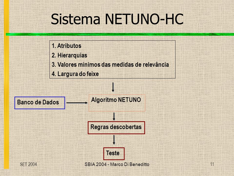 SET 2004SBIA 2004 - Marco Di Beneditto11 Sistema NETUNO-HC Algoritmo NETUNO 1.