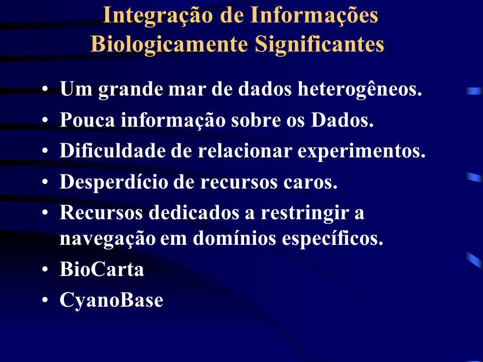 Integração de Informações Biologicamente Significantes Um grande mar de dados heterogêneos. Pouca informação sobre os Dados. Dificuldade de relacionar