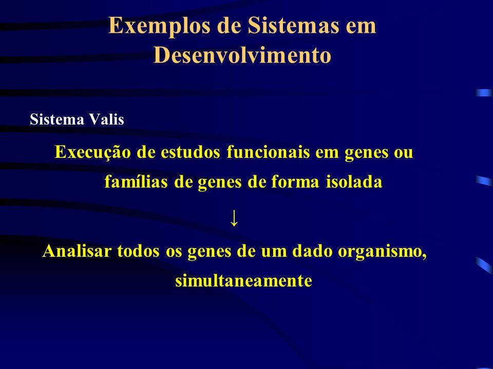 Exemplos de Sistemas em Desenvolvimento Sistema Valis Execução de estudos funcionais em genes ou famílias de genes de forma isolada Analisar todos os