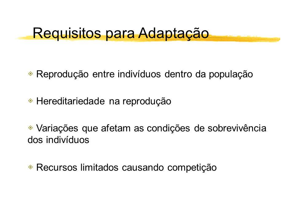 Requisitos para Adaptação Reprodução entre indivíduos dentro da população Variações que afetam as condições de sobrevivência dos indivíduos Hereditari