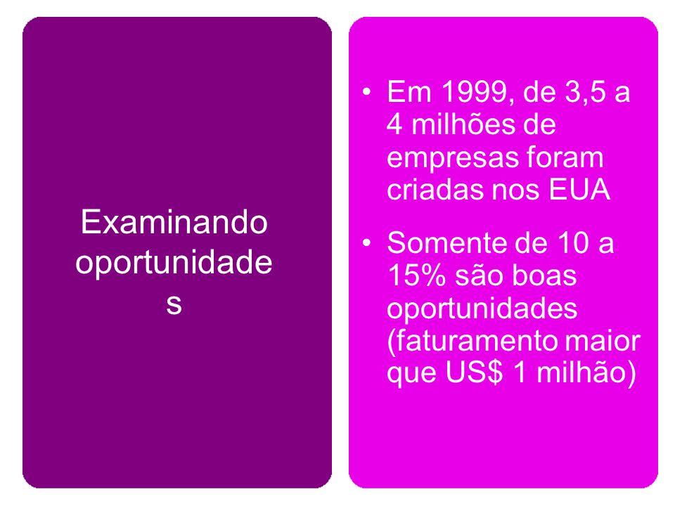 Em 1999, de 3,5 a 4 milhões de empresas foram criadas nos EUA Somente de 10 a 15% são boas oportunidades (faturamento maior que US$ 1 milhão) Examinando oportunidade s