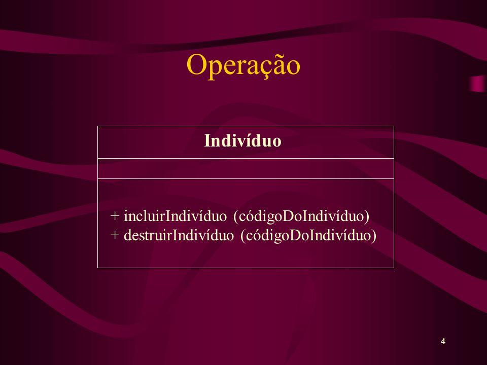 4 Operação Indivíduo + incluirIndivíduo (códigoDoIndivíduo) + destruirIndivíduo (códigoDoIndivíduo)