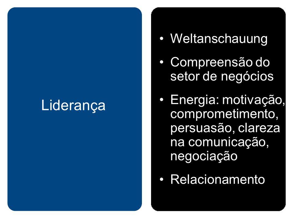 Weltanschauung Compreensão do setor de negócios Energia: motivação, comprometimento, persuasão, clareza na comunicação, negociação Relacionamento Lide