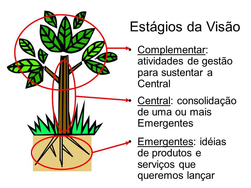 Estágios da Visão Complementar: atividades de gestão para sustentar a Central Central: consolidação de uma ou mais Emergentes Emergentes: idéias de pr