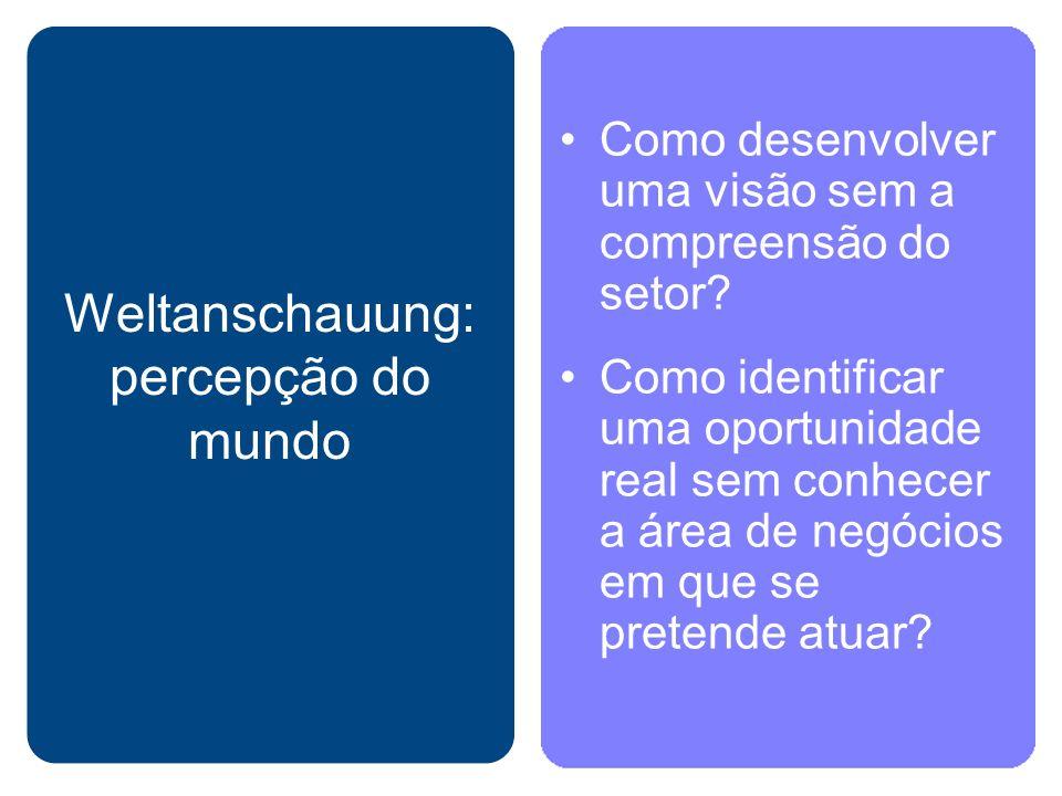 Weltanschauung: percepção do mundo Como desenvolver uma visão sem a compreensão do setor? Como identificar uma oportunidade real sem conhecer a área d