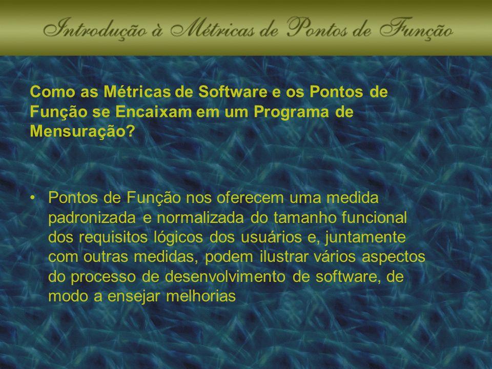 Como as Métricas de Software e os Pontos de Função se Encaixam em um Programa de Mensuração.