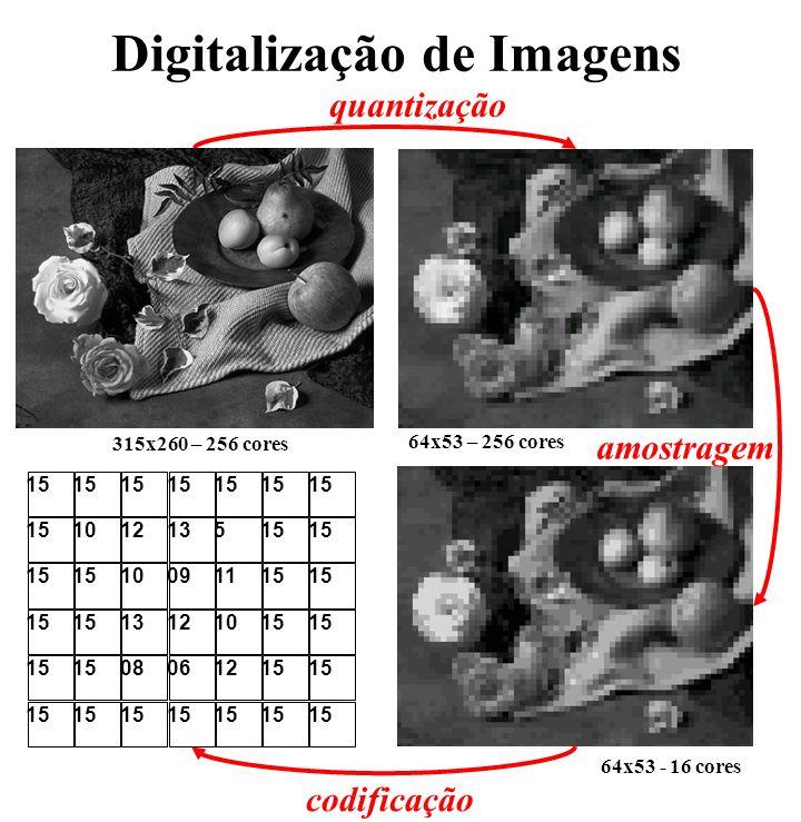 Codificação Imagem no Universo de Codificação: Palette de cores RGBRGB RRGGBB Compressão formato PPM formato BMP Biblioteca IM Obs: Imagens em formato raster (não vetorias)