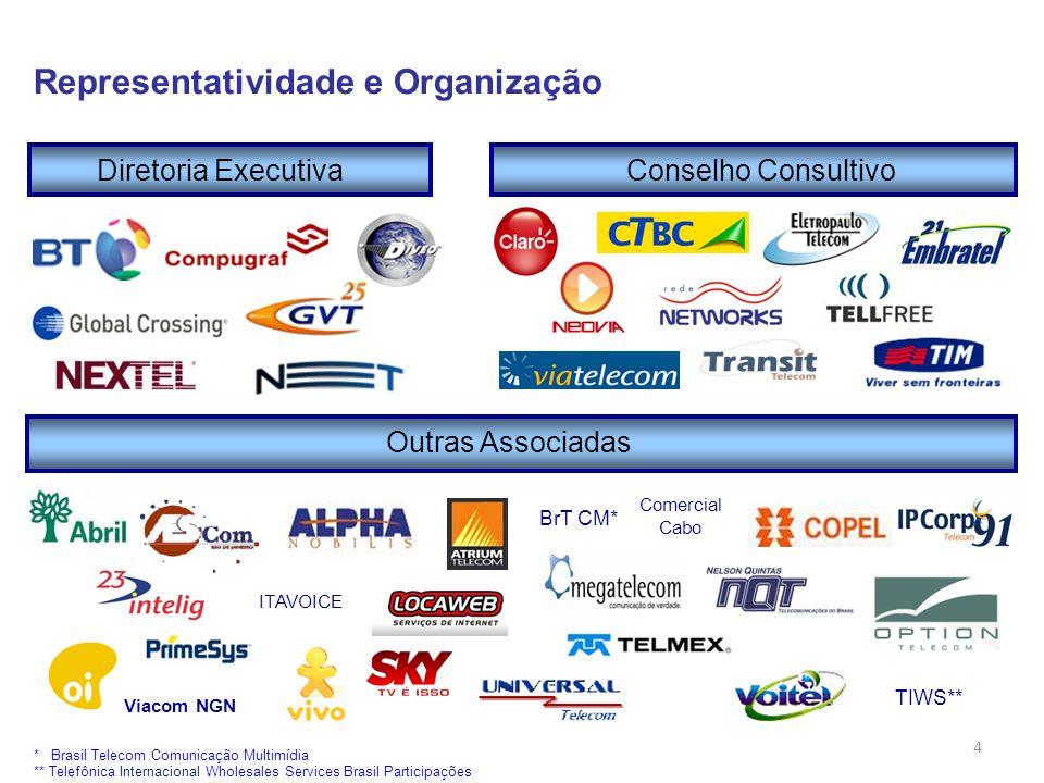 4 Diretoria ExecutivaConselho Consultivo Outras Associadas Comercial Cabo TIWS** BrT CM* * Brasil Telecom Comunicação Multimídia ** Telefônica Interna