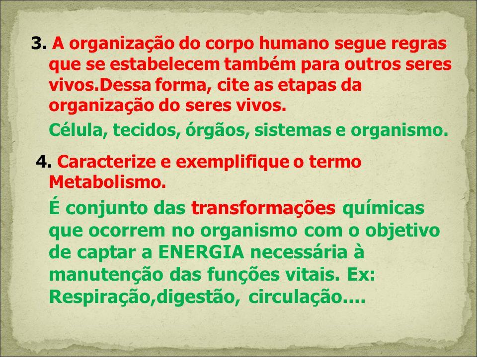 3. A organização do corpo humano segue regras que se estabelecem também para outros seres vivos.Dessa forma, cite as etapas da organização do seres vi