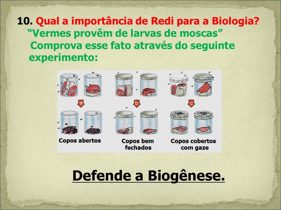 10. Qual a importância de Redi para a Biologia? Vermes provêm de larvas de moscas Comprova esse fato através do seguinte experimento: Defende a Biogên