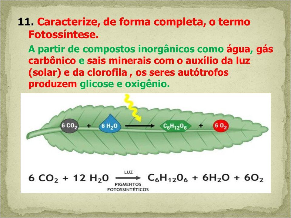 11. Caracterize, de forma completa, o termo Fotossíntese. A partir de compostos inorgânicos como água, gás carbônico e sais minerais com o auxílio da