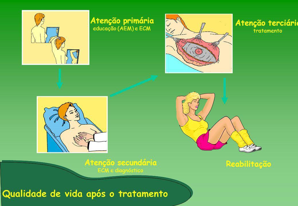 Reabilitação Atenção secundária ECM e diagnóstico Atenção primária educação (AEM) e ECM Atenção terciária tratamento Qualidade de vida após o tratamen
