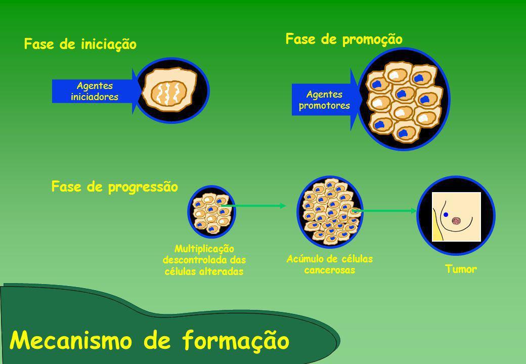 Mecanismo de formação Fase de progressão Agentes promotores Fase de iniciação Agentes iniciadores Fase de promoção Multiplicação descontrolada das cél