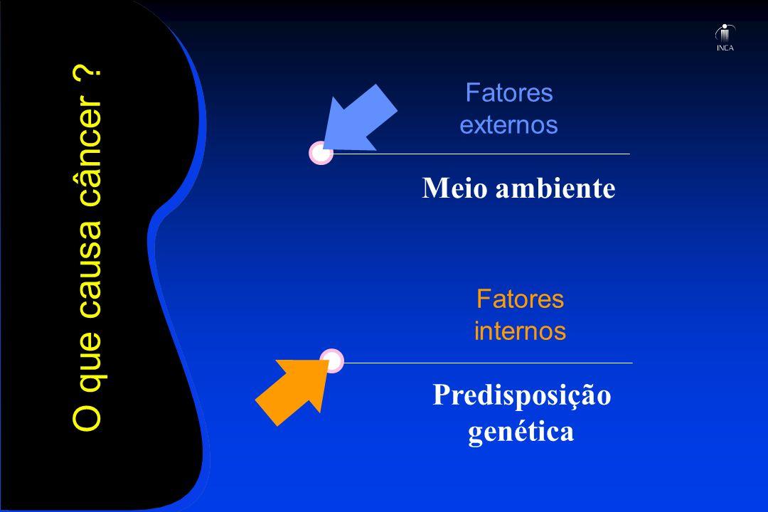 O que causa câncer ? Fatores externos Fatores internos Predisposição genética Meio ambiente
