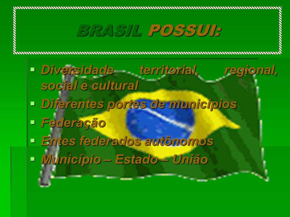 BRASIL POSSUI: Diversidade territorial, regional, social e cultural Diversidade territorial, regional, social e cultural Diferentes portes de municípi