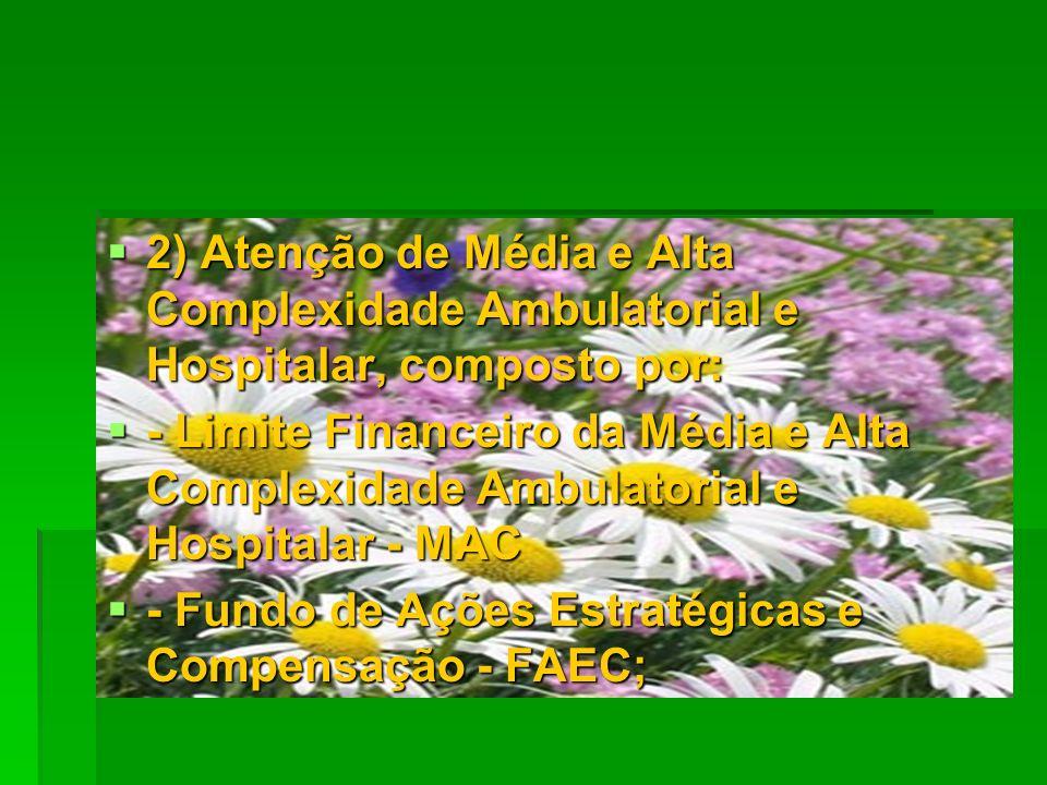2) Atenção de Média e Alta Complexidade Ambulatorial e Hospitalar, composto por: 2) Atenção de Média e Alta Complexidade Ambulatorial e Hospitalar, co