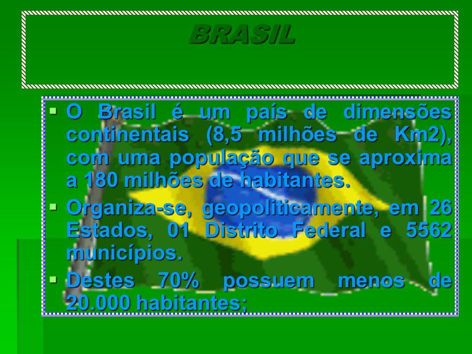 BRASIL O Brasil é um país de dimensões continentais (8,5 milhões de Km2), com uma população que se aproxima a 180 milhões de habitantes. O Brasil é um