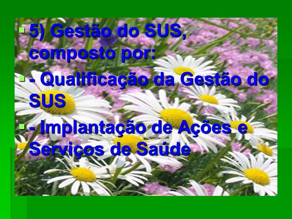 5) Gestão do SUS, composto por: 5) Gestão do SUS, composto por: - Qualificação da Gestão do SUS - Qualificação da Gestão do SUS - Implantação de Ações