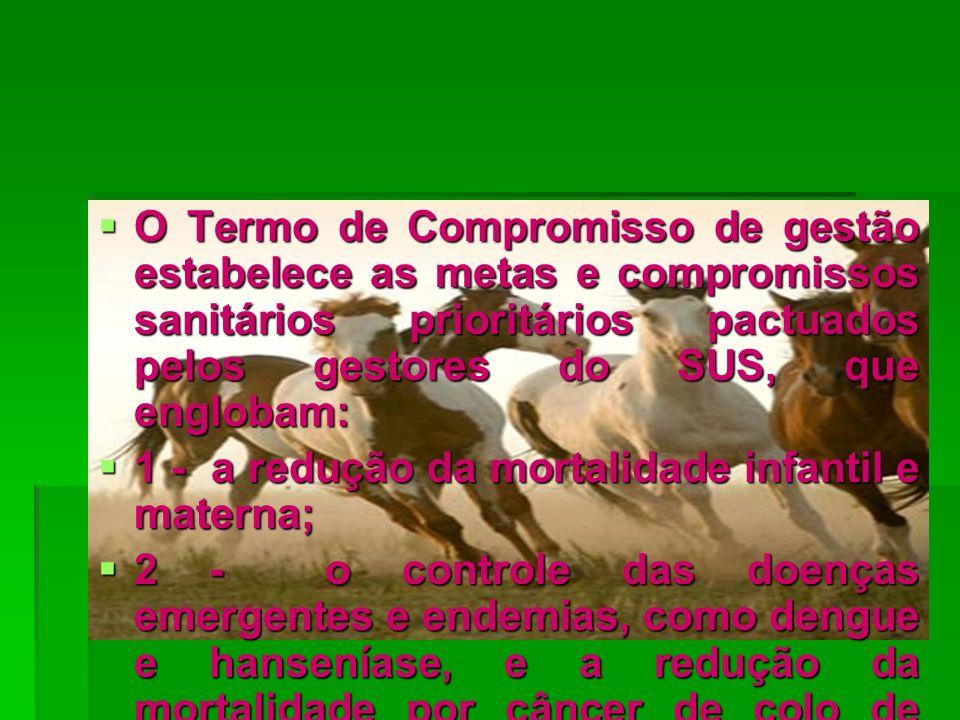 O Termo de Compromisso de gestão estabelece as metas e compromissos sanitários prioritários pactuados pelos gestores do SUS, que englobam: O Termo de