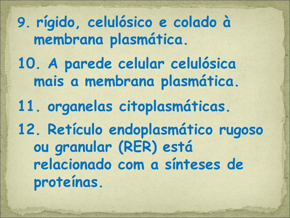 9. rígido, celulósico e colado à membrana plasmática. 10. A parede celular celulósica mais a membrana plasmática. 11. organelas citoplasmáticas. 12. R