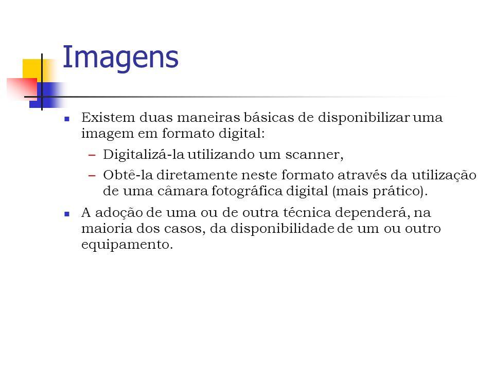 Imagens Existem duas maneiras básicas de disponibilizar uma imagem em formato digital: –Digitalizá-la utilizando um scanner, –Obtê-la diretamente neste formato através da utilização de uma câmara fotográfica digital (mais prático).