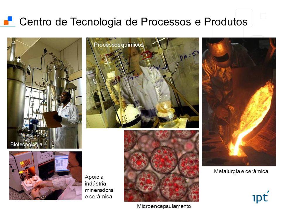 Centro de Tecnologia de Processos e Produtos Metalurgia e cerâmica Microencapsulamento Processos químicos Apoio à indústria mineradora e cerâmica