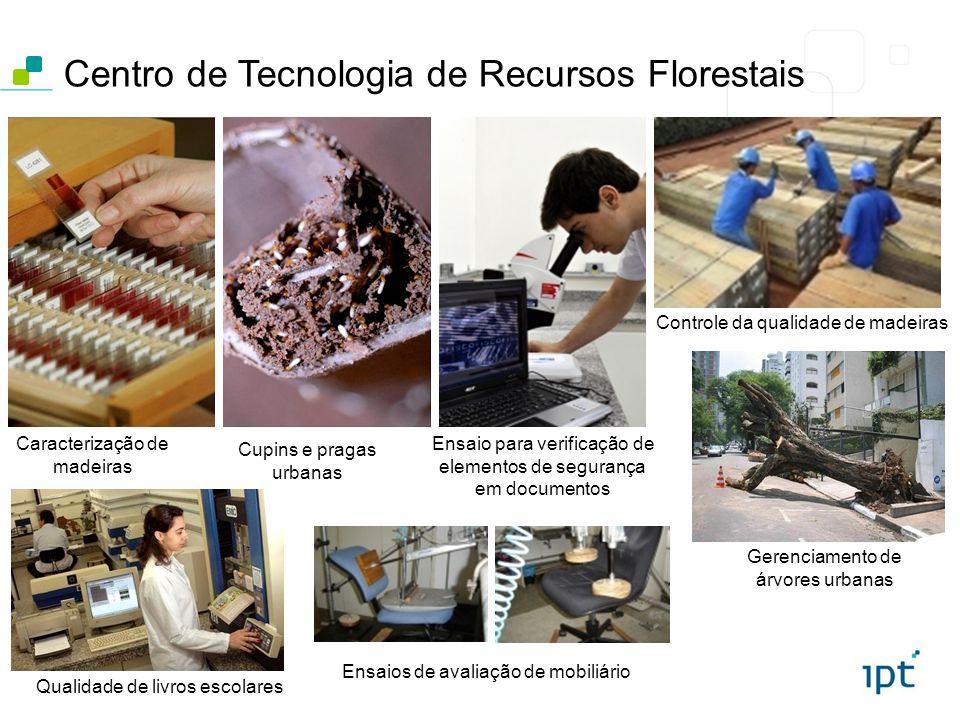 Centro de Tecnologia de Recursos Florestais Gerenciamento de árvores urbanas Cupins e pragas urbanas Caracterização de madeiras Qualidade de livros es
