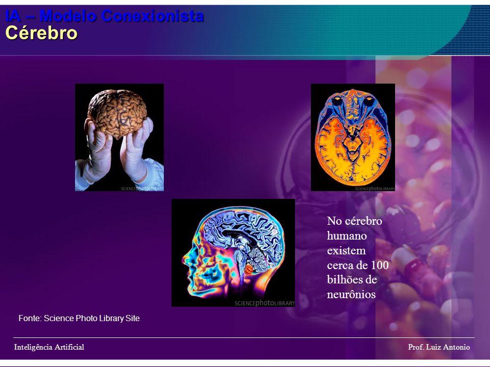 IA – Modelo Conexionista Cérebro Inteligência Artificial Prof. Luiz Antonio No cérebro humano existem cerca de 100 bilhões de neurônios Fonte: Science