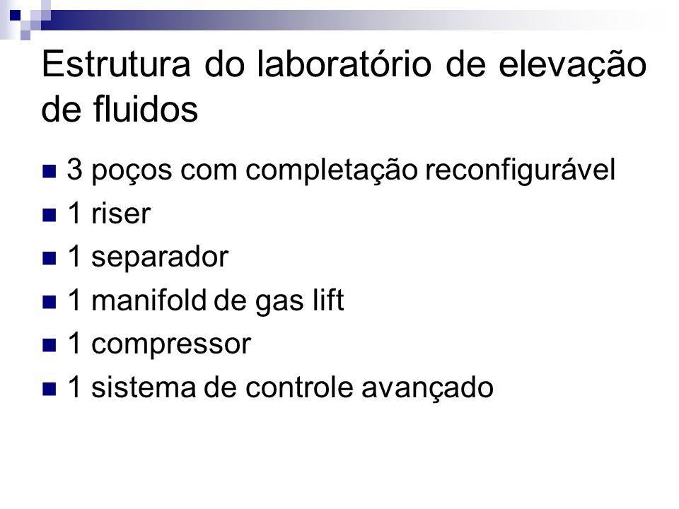 Estrutura do laboratório de elevação de fluidos 3 poços com completação reconfigurável 1 riser 1 separador 1 manifold de gas lift 1 compressor 1 siste