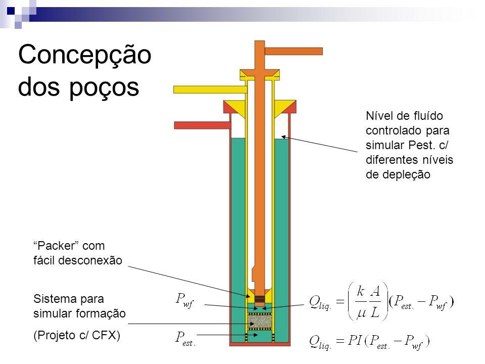 Concepção dos poços Nível de fluído controlado para simular Pest. c/ diferentes níveis de depleção Packer com fácil desconexão Sistema para simular fo