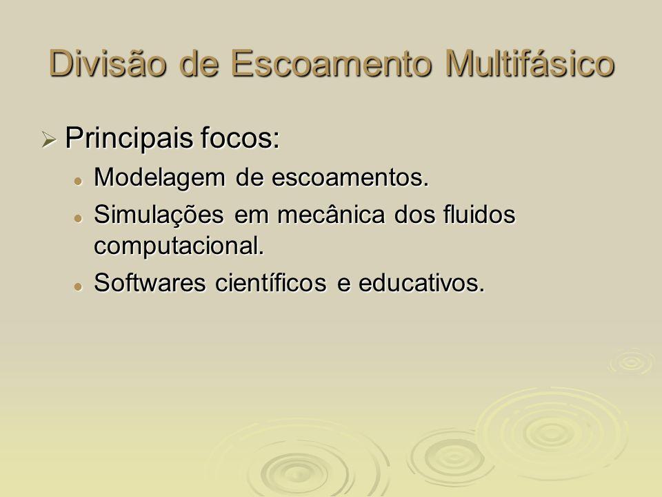 Divisão de Escoamento Multifásico Principais focos: Principais focos: Modelagem de escoamentos. Modelagem de escoamentos. Simulações em mecânica dos f