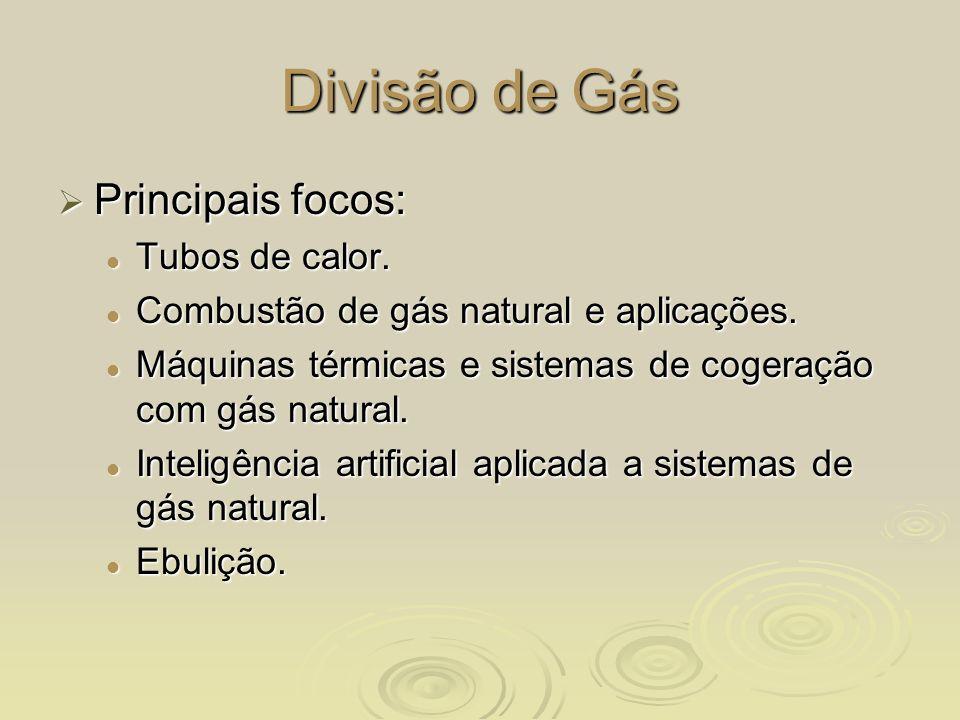 Divisão de Gás Principais focos: Principais focos: Tubos de calor. Tubos de calor. Combustão de gás natural e aplicações. Combustão de gás natural e a