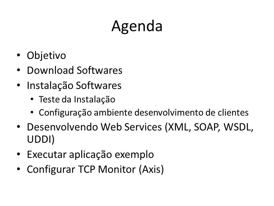 Agenda Objetivo Download Softwares Instalação Softwares Teste da Instalação Configuração ambiente desenvolvimento de clientes Desenvolvendo Web Servic