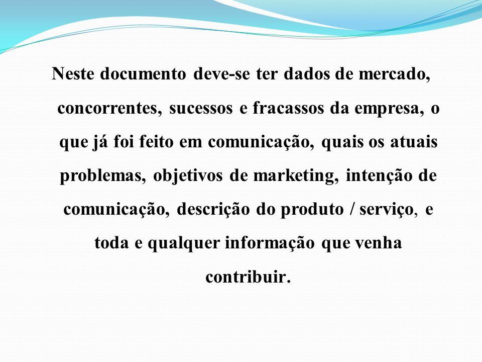 Neste documento deve-se ter dados de mercado, concorrentes, sucessos e fracassos da empresa, o que já foi feito em comunicação, quais os atuais proble