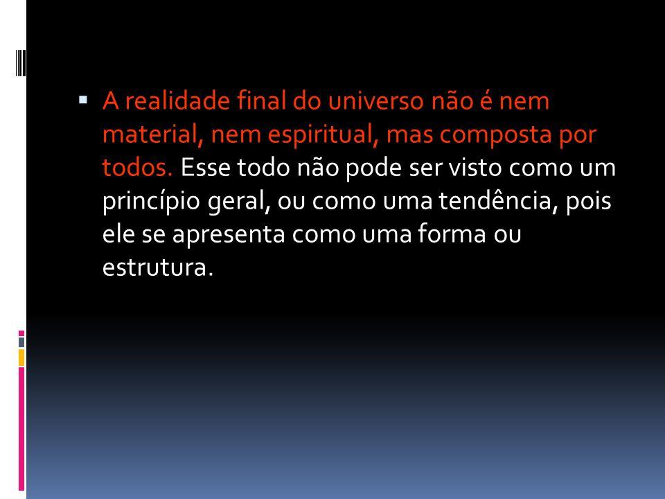 A realidade final do universo não é nem material, nem espiritual, mas composta por todos. Esse todo não pode ser visto como um princípio geral, ou com