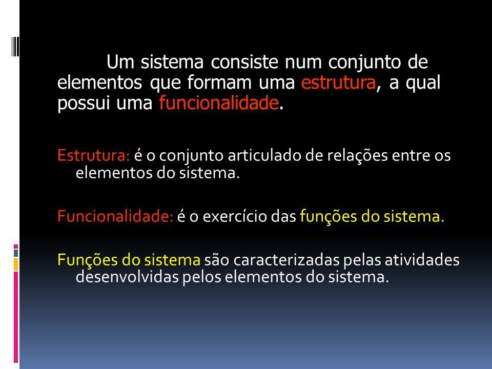 Estrutura: é o conjunto articulado de relações entre os elementos do sistema. Funcionalidade: é o exercício das funções do sistema. Funções do sistema