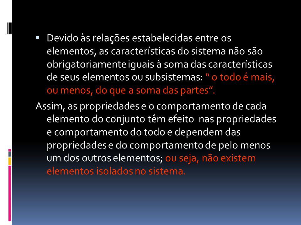 Devido às relações estabelecidas entre os elementos, as características do sistema não são obrigatoriamente iguais à soma das características de seus
