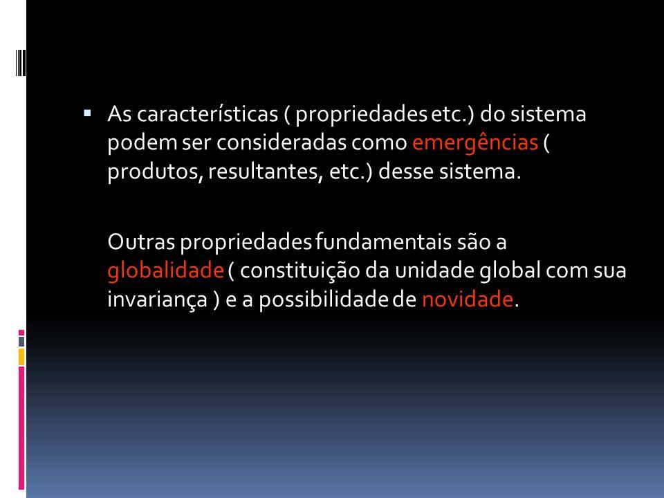 As características ( propriedades etc.) do sistema podem ser consideradas como emergências ( produtos, resultantes, etc.) desse sistema. Outras propri