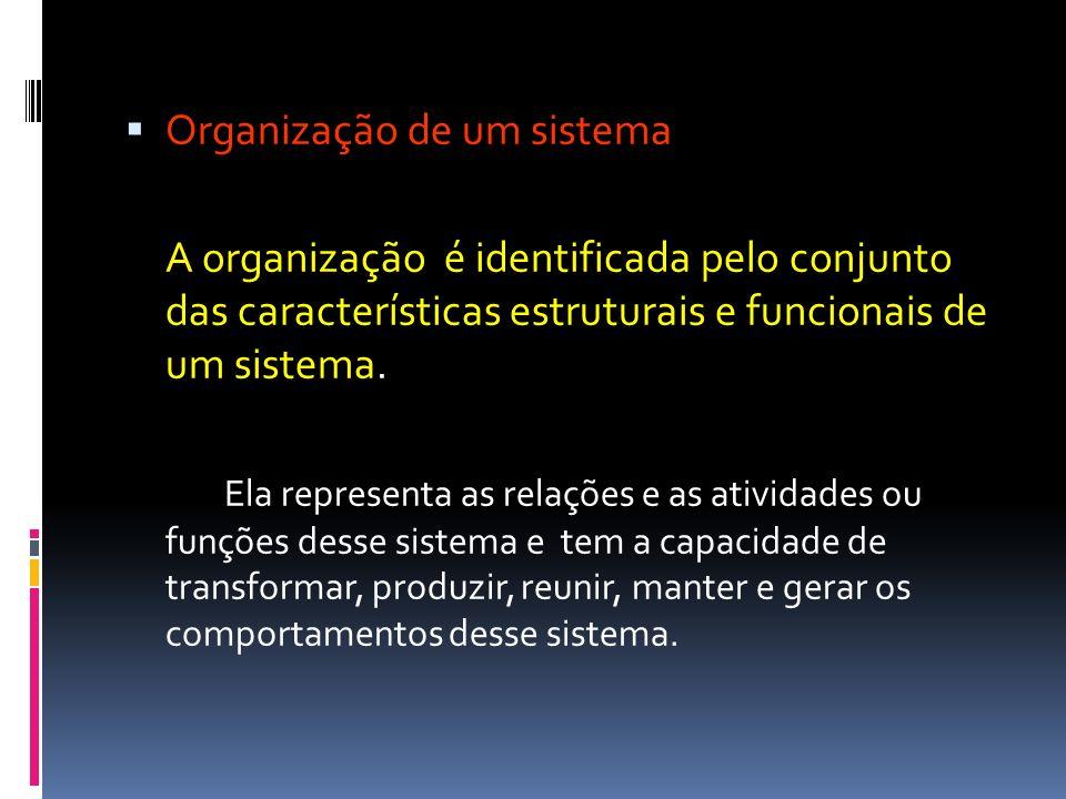 Organização de um sistema A organização é identificada pelo conjunto das características estruturais e funcionais de um sistema. Ela representa as rel