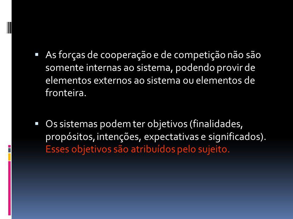 As forças de cooperação e de competição não são somente internas ao sistema, podendo provir de elementos externos ao sistema ou elementos de fronteira