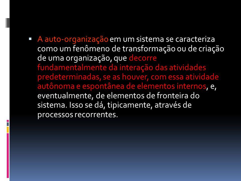 A auto-organização em um sistema se caracteriza como um fenômeno de transformação ou de criação de uma organização, que decorre fundamentalmente da in