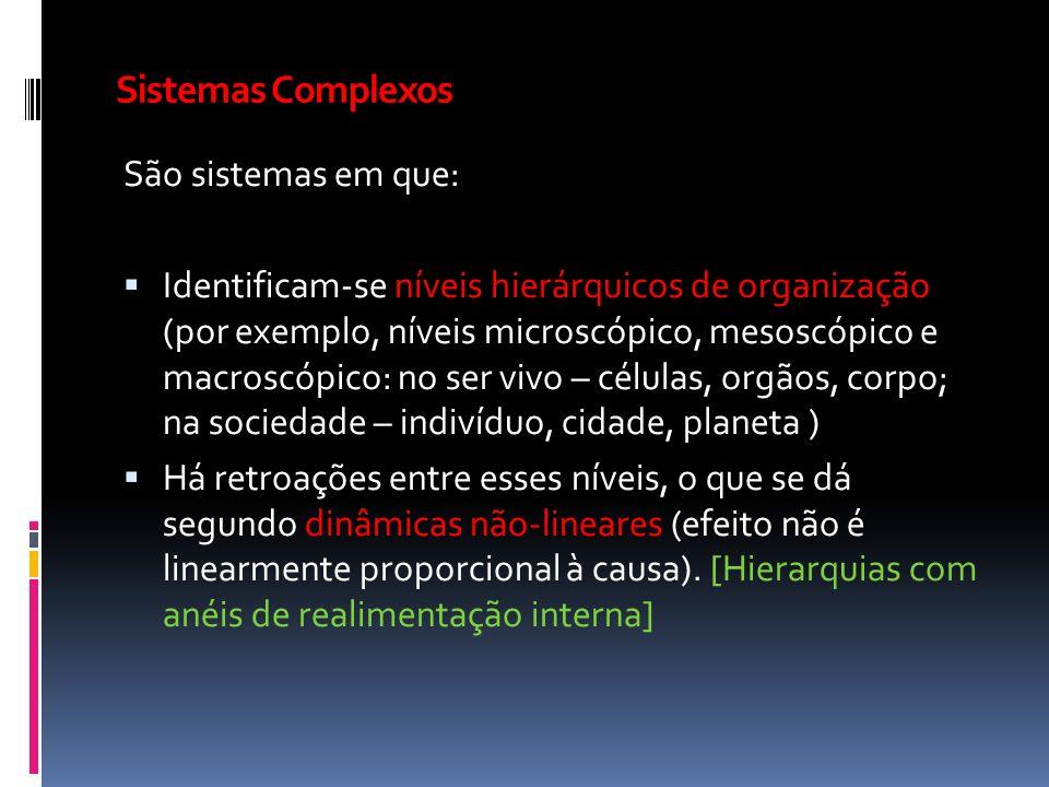 Sistemas Complexos São sistemas em que: Identificam-se níveis hierárquicos de organização (por exemplo, níveis microscópico, mesoscópico e macroscópic