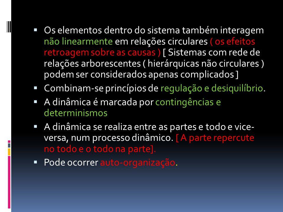 Os elementos dentro do sistema também interagem não linearmente em relações circulares ( os efeitos retroagem sobre as causas ) [ Sistemas com rede de
