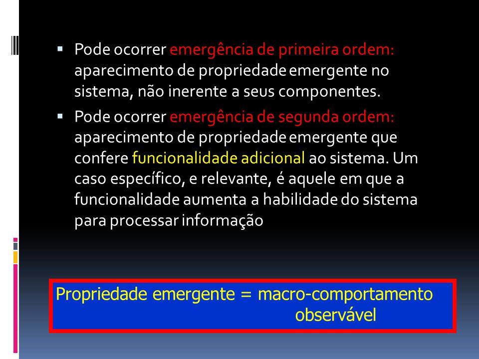 Pode ocorrer emergência de primeira ordem: aparecimento de propriedade emergente no sistema, não inerente a seus componentes. Pode ocorrer emergência