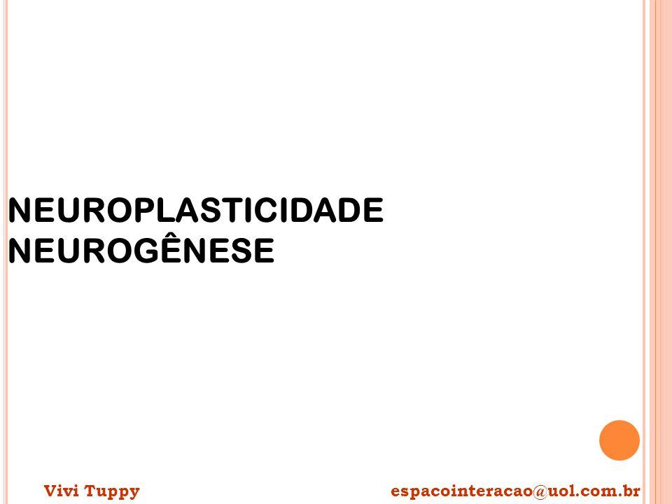 NEUROPLASTICIDADE NEUROGÊNESE Vivi Tuppy espacointeracao@uol.com.br