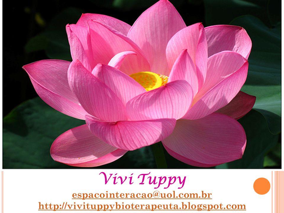 Vivi Tuppy espacointeracao@uol.com.br http://vivituppybioterapeuta.blogspot.com