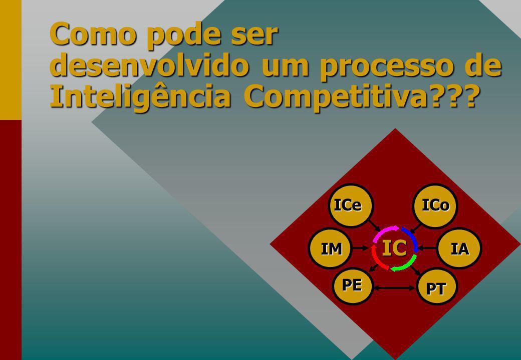 Como pode ser desenvolvido um processo de Inteligência Competitiva??? PE PT IA ICoICe IM IC